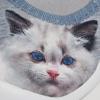 Kočička 439